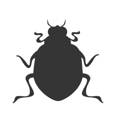 bettle scarab insect icon graphic vector image