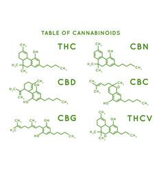 Cannabinoid structure cannabidiol molecular vector
