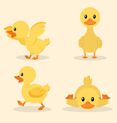 cute yellow duck collection set vector image