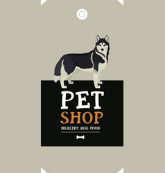 Dog collection siberian husky poster vector