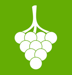 grapes on the branch icon green vector image