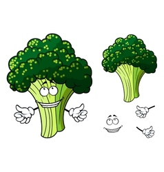 Happy fresh cartoon broccoli giving a thumbs up vector image