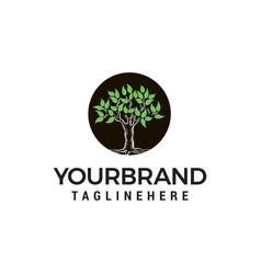 tree logo design concept template vector image