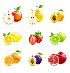 set of bright fruits and their halves vector image vector image