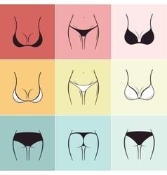 Set of sketch bra and panties logos vector image