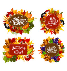 autumn fest harvest and leaf with fall quotes vector image