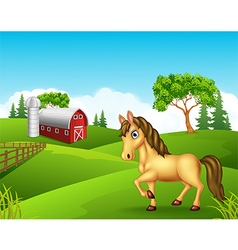 Cartoon horse in the farm vector image