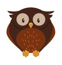 cute owl bird cartoon isolated vector image