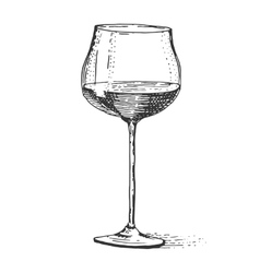 Red wine glass isolated Vintage engraved hand vector image