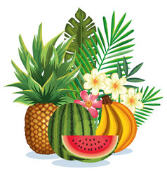 tropical garden with fruits vector image