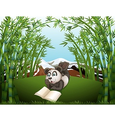 A panda reading at the hilltop with bamboos vector image vector image