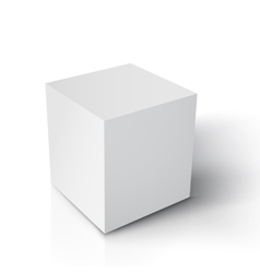 Realistic Cube Paper White Cube vector image