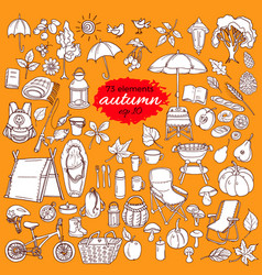 set autumn color vector image vector image