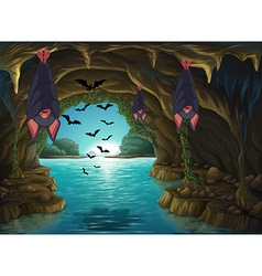 Bats living in the dark cave vector image