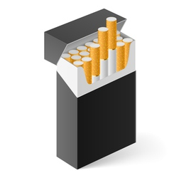 Pack of cigarettes vector image