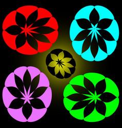 set of petals of different colors vector image