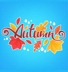 Autumn bright fall leaves and lettering vector