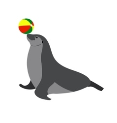 Circus seal playing a ball Sea vector image