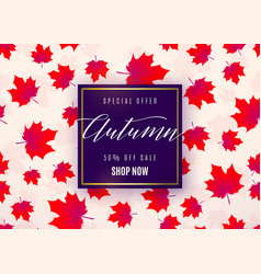 fashion autumn sale poster vector image