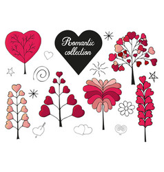 floral collection of hand drawn romantic herbs vector image