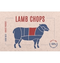 Label for meat with text lamb chops vector