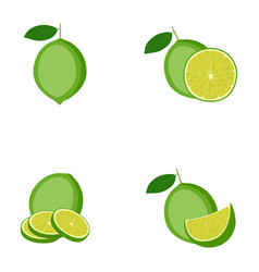 lime whole fruit half slice vector image