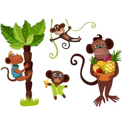 Monkeys in the jungle vector