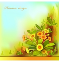 Orange yellow primroses vector