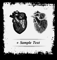 Paper art Human Spleen vector