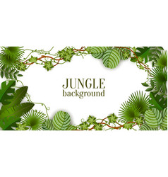 tropical jungle exotic lianas vine and palm leaves vector image