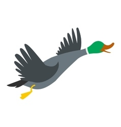 Wild duck icon vector