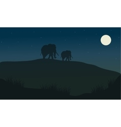 Silhouette oof elephant at the night vector image vector image