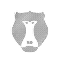 Striped head of baboon aggressive monkey in vector image