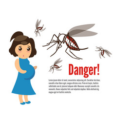 pregnant woman attacked by mosquitoes vector image vector image