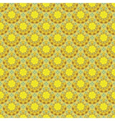 Abstract floral ethnic background seamless pattern vector image
