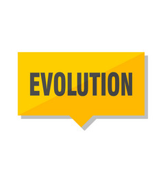 evolution price tag vector image