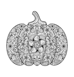 Pumpkin Hand drawn vegetable vector