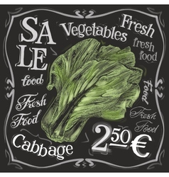 Ripe cabbage logo design template fresh vector