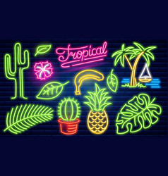 set fashion neon sign cactus and pineapple vector image