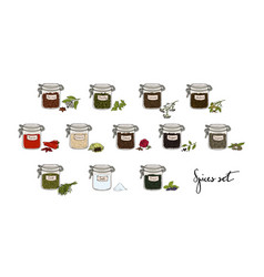 Spices in jars big set part 2 collection hand vector