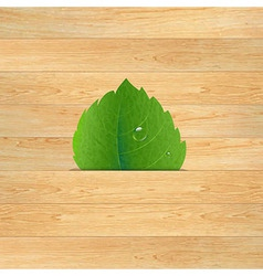 Wood Texture With Leaf vector image