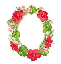 tropical flower wreath vector image