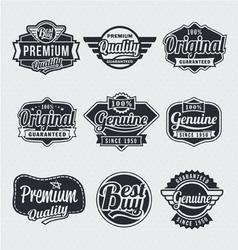 Retro vintage label Set vector image vector image