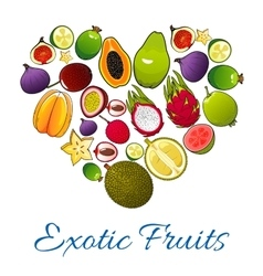 Exotic fruits icons in shape of heart vector