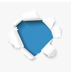 Hole in paper vector