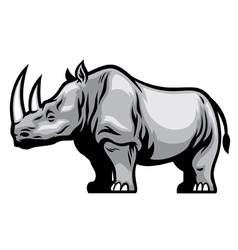 African Rhino vector image