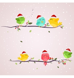 colorful birds on christmas scene vector image