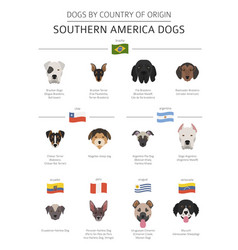 Dogs by country of origin latin american dog vector
