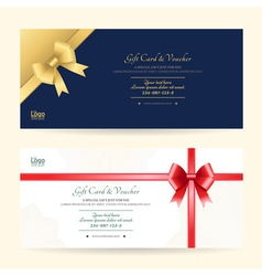 Elegant gift voucher or gift card template vector image