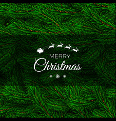 fir branch backdrop design christmas decoration vector image